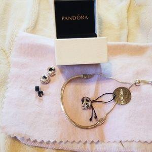Pandora Moments slider bracelet & 3 charms